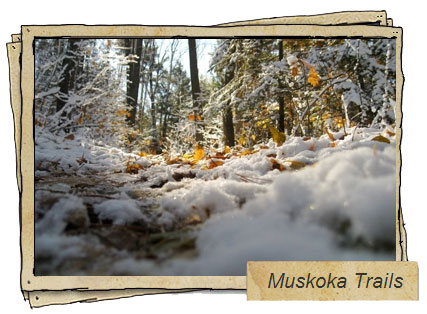 Muskoka Trails